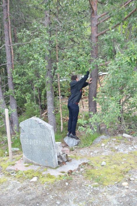 Eidebanen, Granvinsbanen, Hardangerbanen