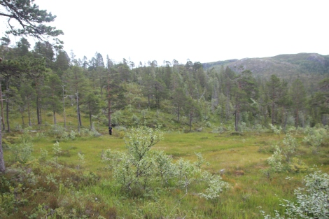 06-OppePaToppen